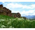 Along natural reserves and national parks of Uzbekistan